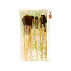 6 Piece Brush Starter Set