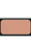 Blusher 13 (Цвет 13 Brown Orange Blush)